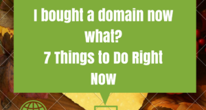 I bought a domain now what