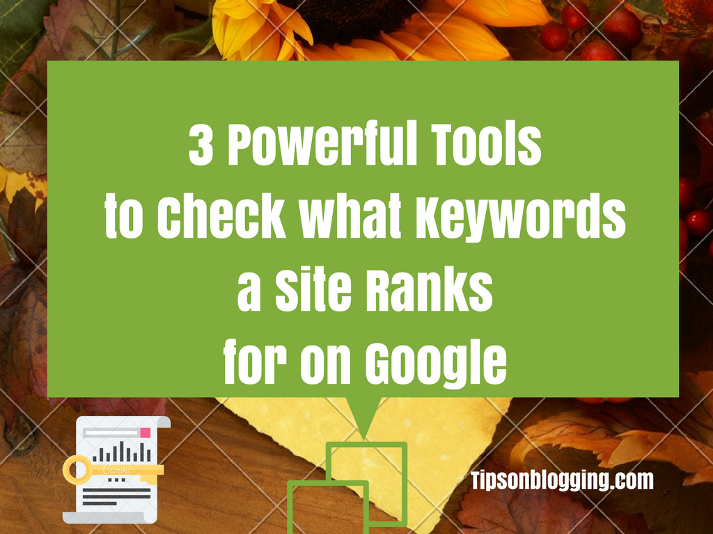 check what keywords a site ranks for on google search